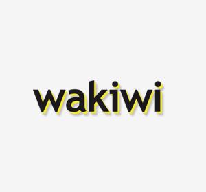 Siguiente<span>Wakiwi móvil (propuesta)</span><i>→</i>